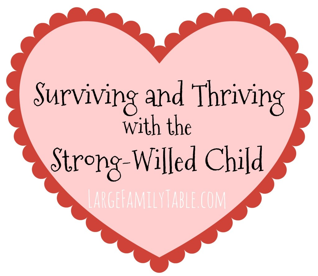 Surviving and Thriving with the Strong-Willed Child