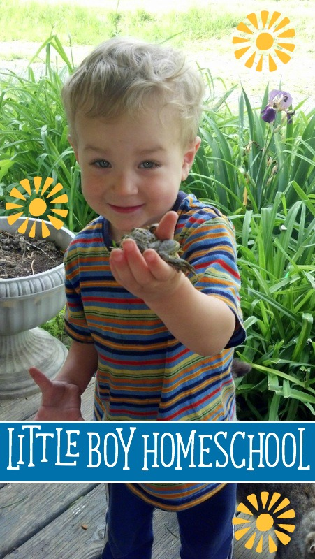 A Picture Collection of Little Boy Homeschool by Gabriel-2