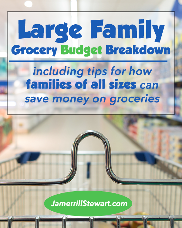 large family grocery budget breakdown