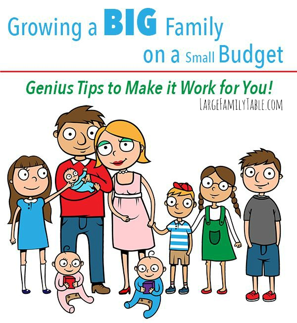 Growing a BIG Family on a Small Budget- Genius Tips to Make it Work for You!-2