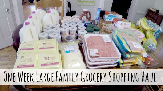 One Week Grocery Shopping Haul for Our Large Family