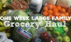 One Week Large Family Grocery Haul -- December 2015 {Food Lion}