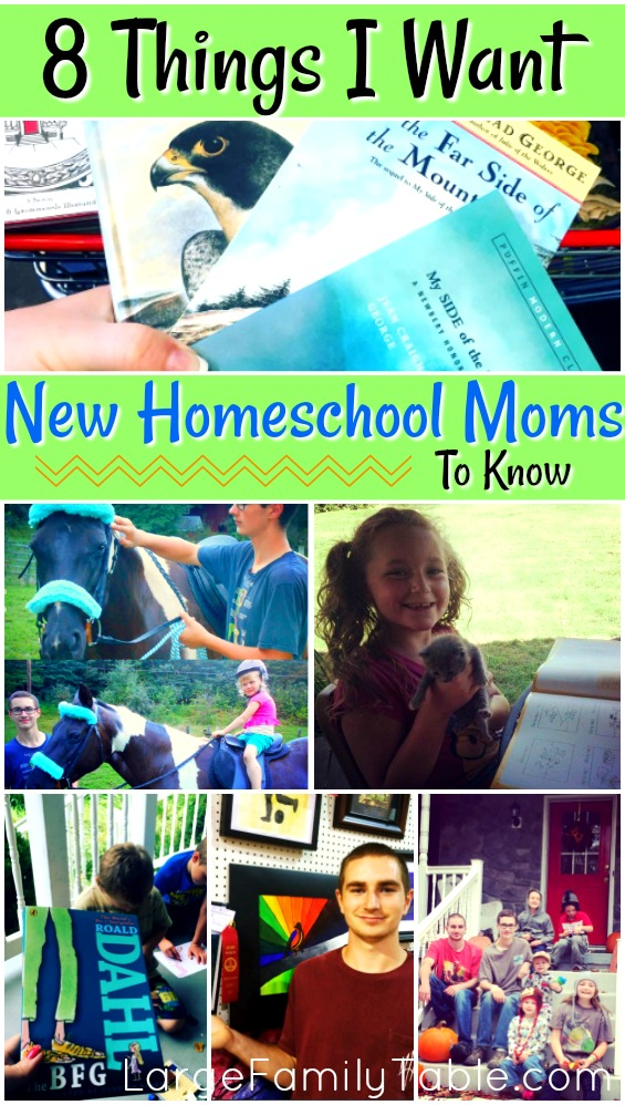 8 things i want new homeschooling moms to know for I need a new home