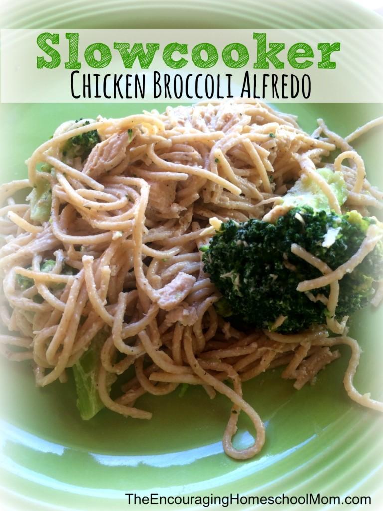 Slowcooker Chicken Broccoli Alfredo