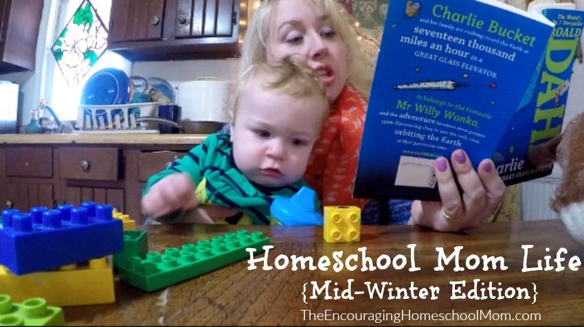 Homeschool Mom Life Mid-Winter Edition