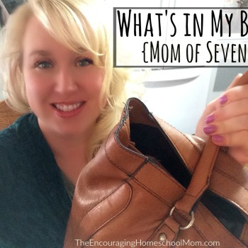 What's in My Bag Vlog {Mom of Seven}