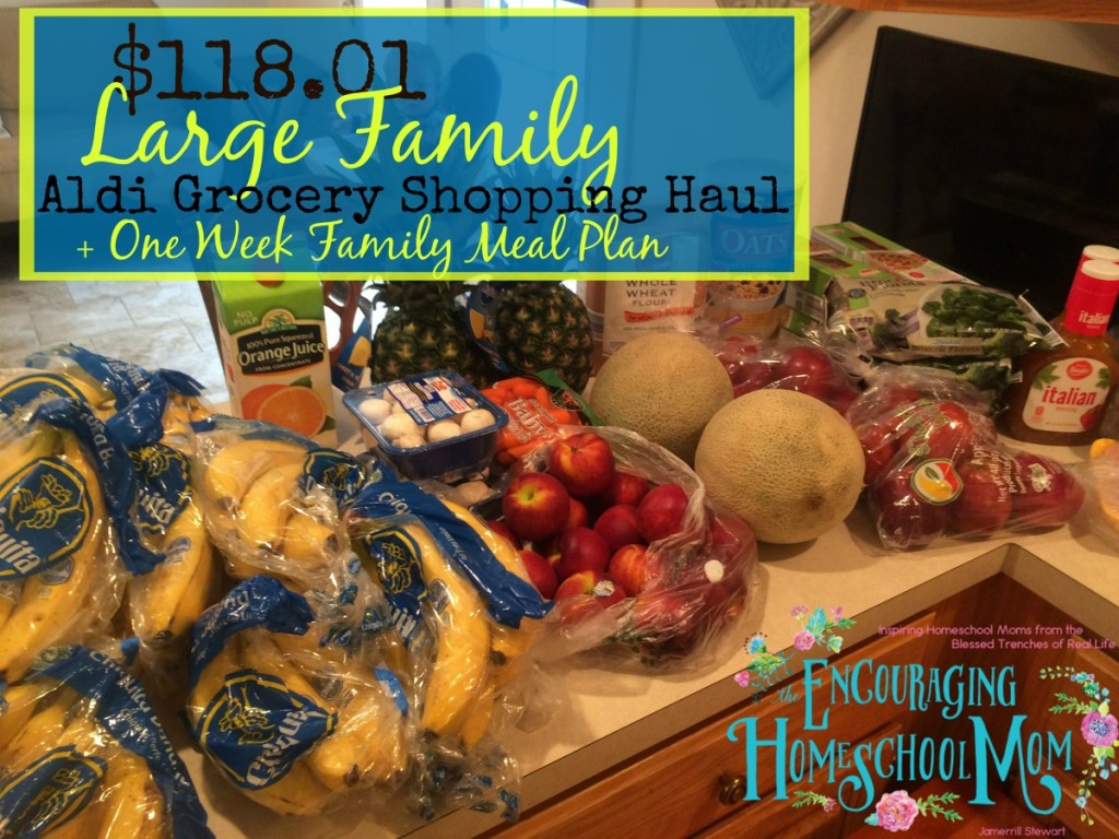 $118 01 Large Family Aldi Grocery Haul + Meal Plan for the Week