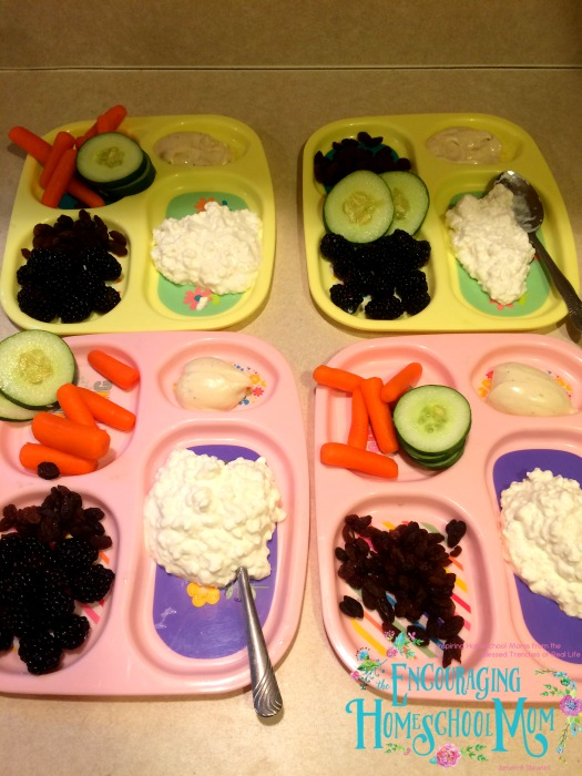 Easy Homeschool Lunch Plates