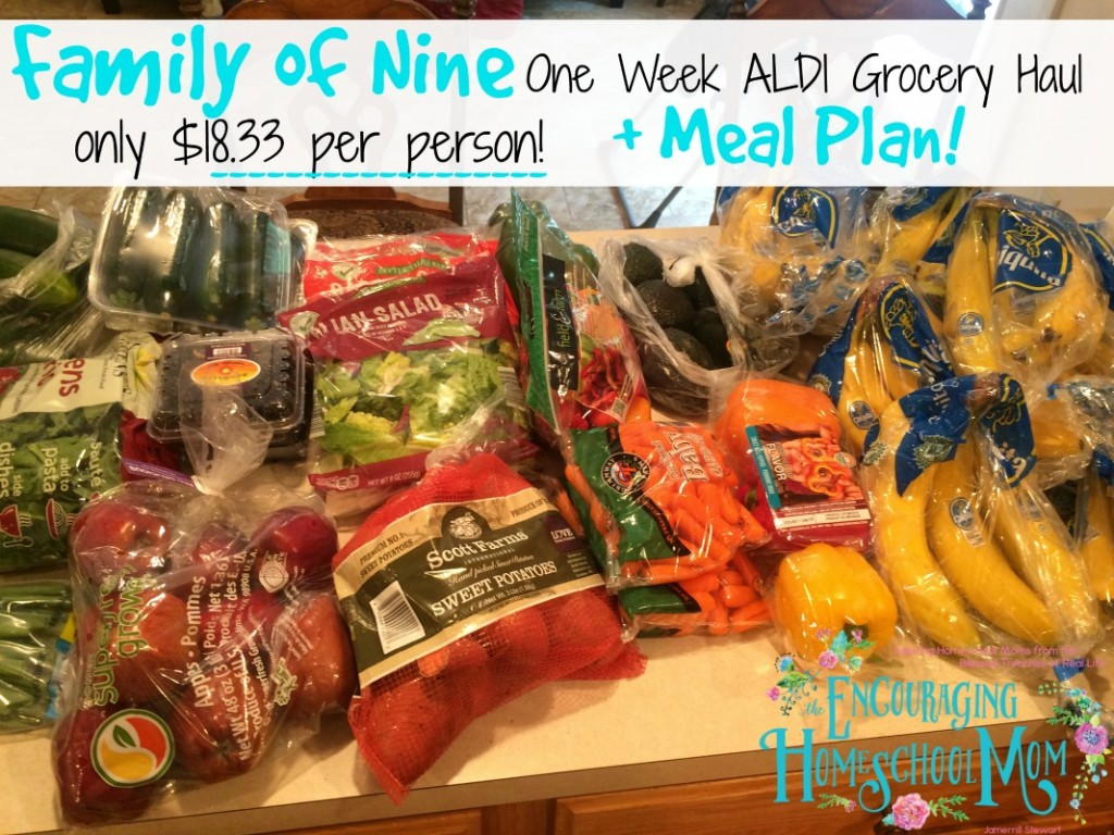 Family of Nine Aldi One Week Grocery Haul + Large Family