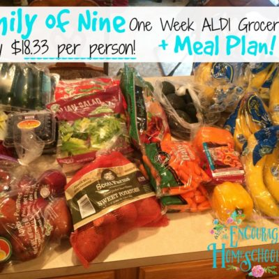 Family of Nine Aldi One Week Grocery Haul + Meal Plan {only $165 = $18.33 per person!)