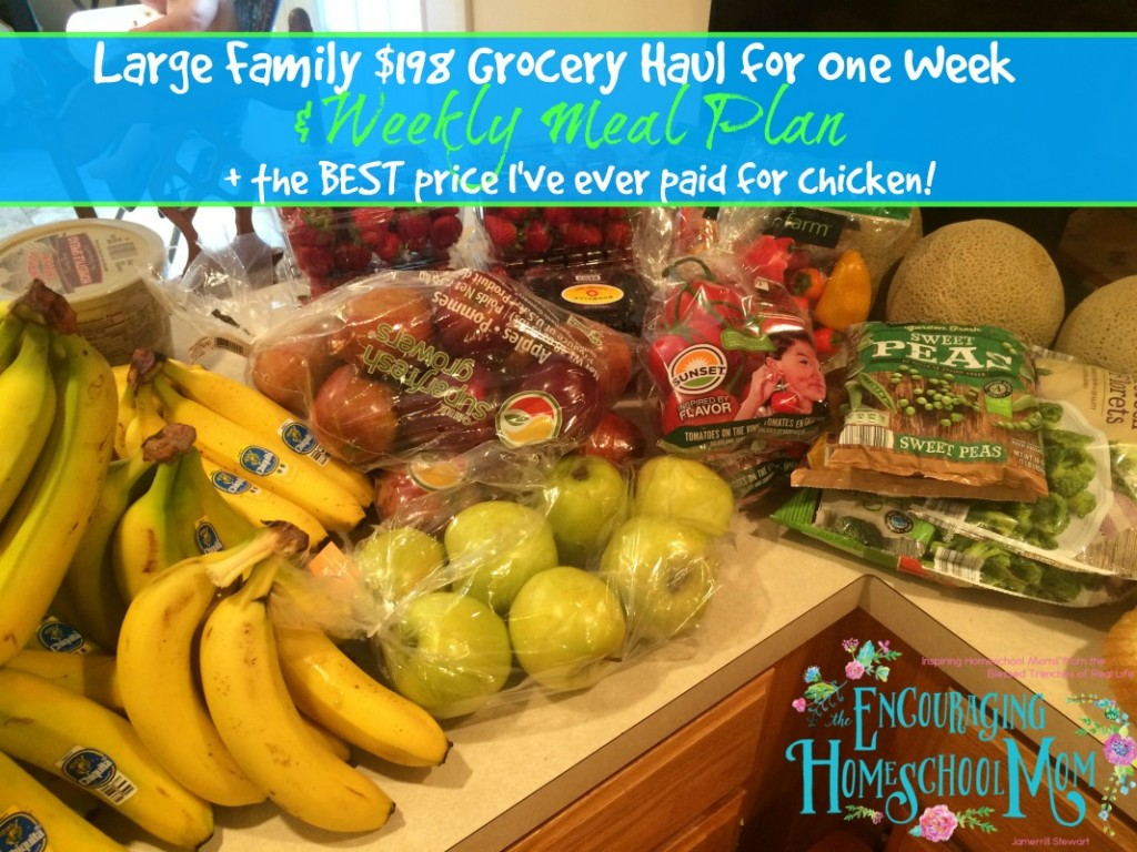 Large Family Groceries