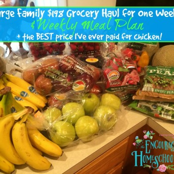 Large Family $198 Aldi Grocery Haul + Weekly Meal Plan (GREAT deal on chicken!)