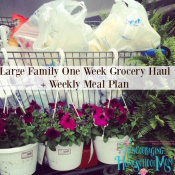 Large Family One Week Grocery Haul + Weekly Meal Plan {+ Chit Chat & Announcement!}