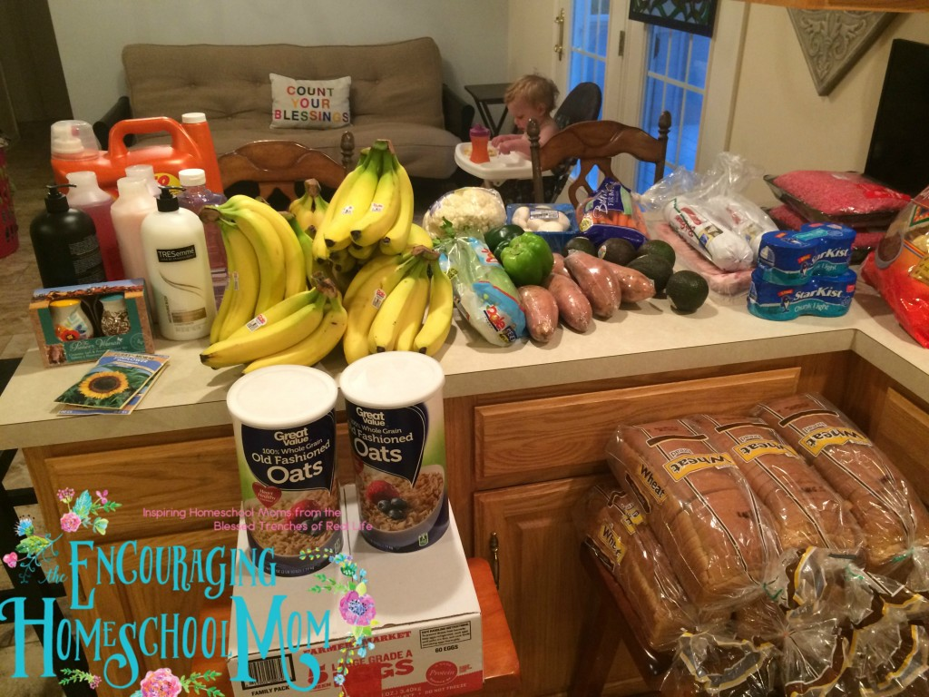 Large Family One Week Grocery Haul + Weekly Meal Plan 5.2.16