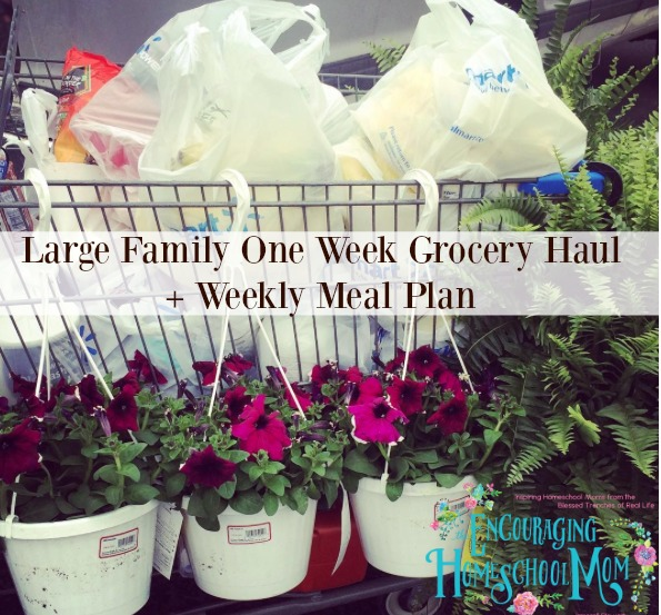 Large Family One Week Grocery Haul + Weekly Meal Plan