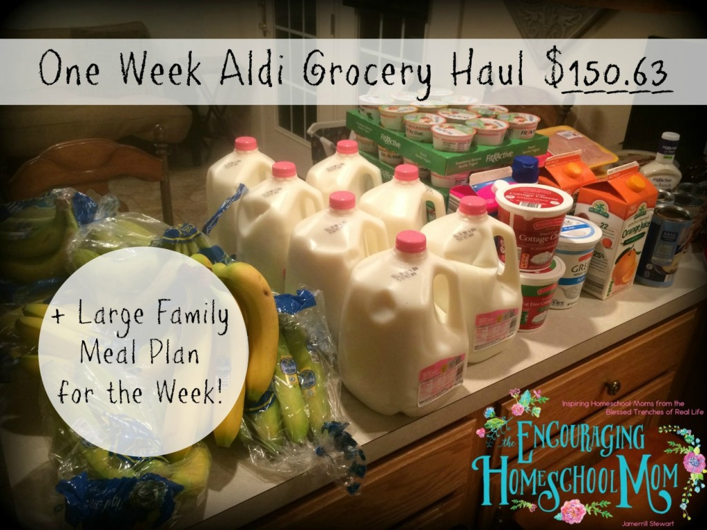 This Week's $150 63 Large Family Aldi Grocery Haul + One