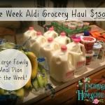 One Week Aldi Grocery Haul 5 15 16
