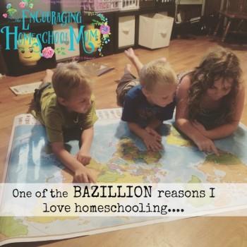 One of the BAZILLION Reasons I Love Homeschooling….
