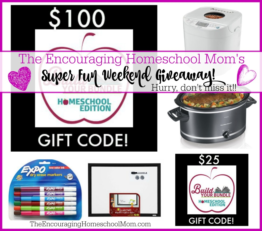 SUPER FUN HOMESCHOOL MOM WEEKEND GIVEAWAY! (Over $200 Value!)