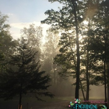 Extra Loads of Encouragement from The Encouraging Homeschool Mom: 5.8.16