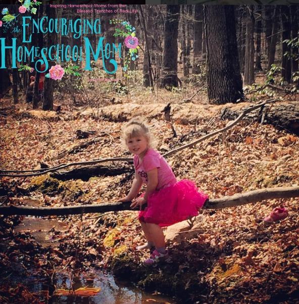 The Best Homeschool Preschool Curriculum