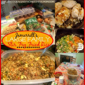 Jamerrill's Large Family Stir Fry Fried Rice Recipe