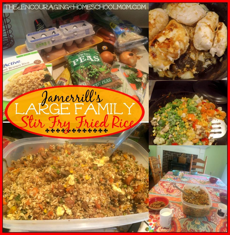 Jamerrill's Large Family Stir Fry Fried Rice