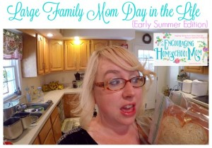 LARGE FAMILY MOM DAY IN THE LIFE {Early Summer Edition}