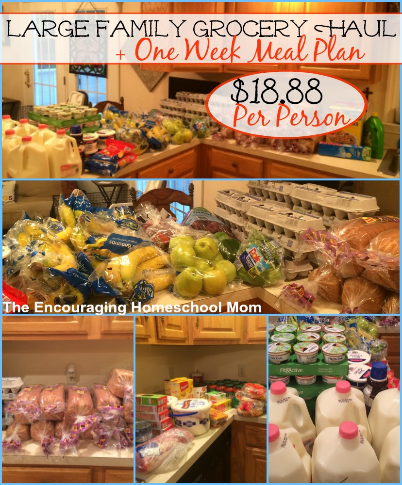 Large Family Grocery Haul and Meal Plan