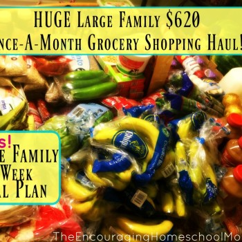 HUGE Large Family $620 Once-A-Month Grocery Shopping Haul! $17.22 per person/per week!