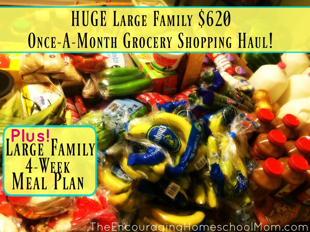Large Family once-a-month grocery shopping haul