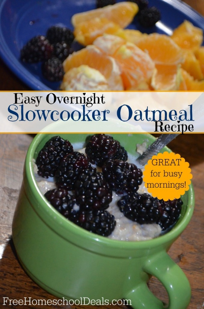 Easy Overnight Slowcooker Oatmeal Recipe – great for busy mornings!