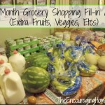 Once-a-Month Grocery Shopping Fill-in Aldi Haul (Extra Fruits, Veggies, Etcs)