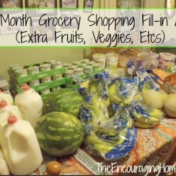 Once-a-Month Grocery Shopping Fill-in Aldi Haul (Extra Fruits, Veggies, Etcs) $200/Family of Nine