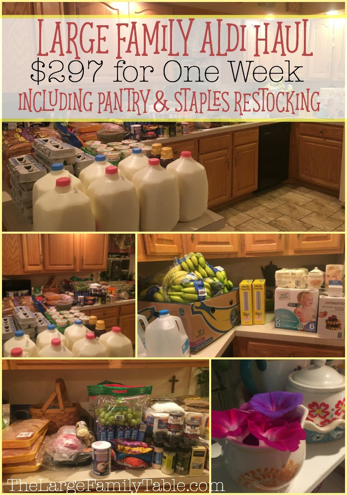 large-family-grocery-shopping