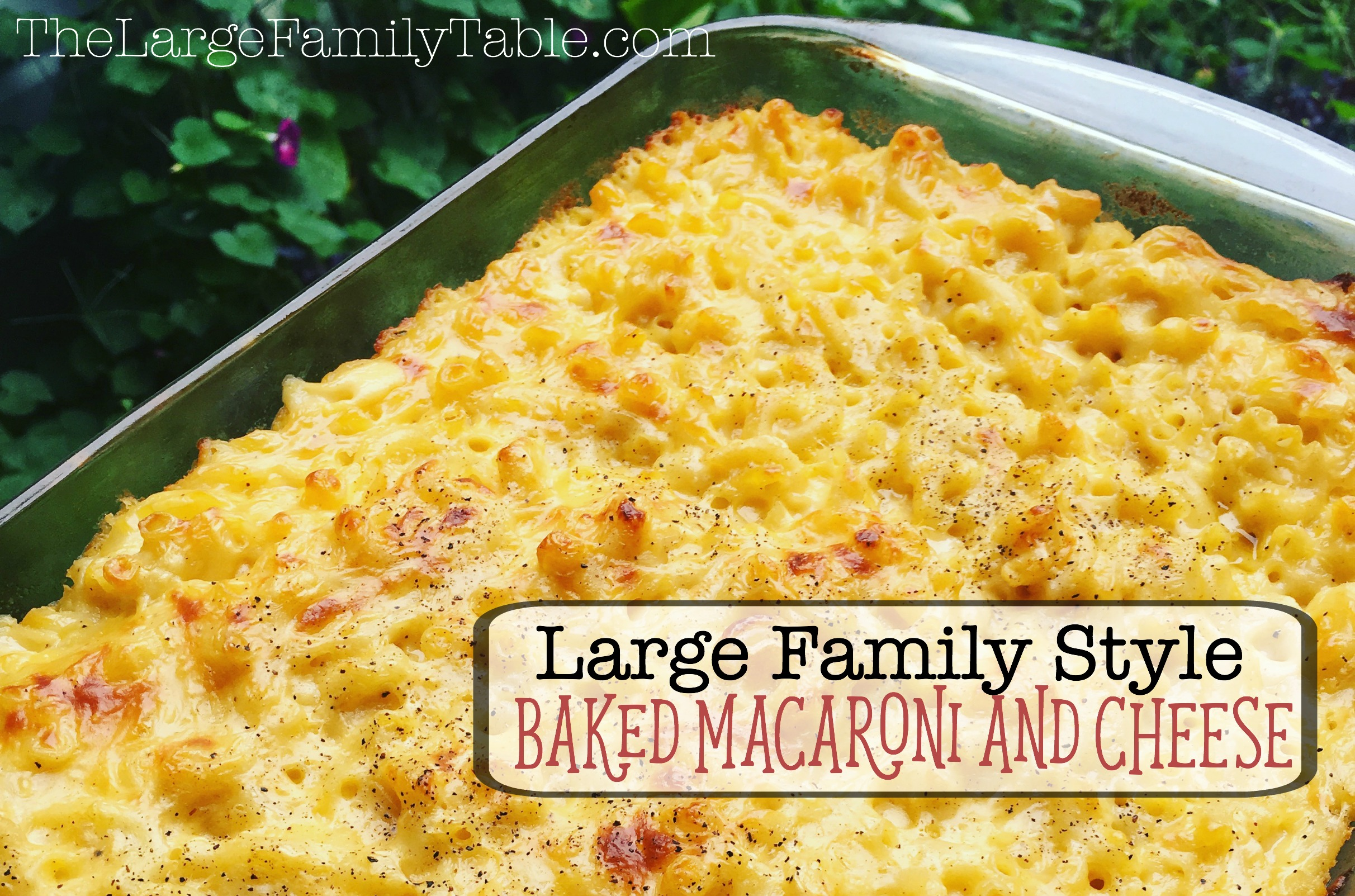 large-family-baked-macaroni-and-cheese