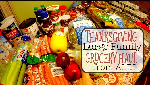 thanksgiving-aldi-large-family-grocery-haul-plus-free-large-family-thanksgiving-meal-plan-20-at-6-42-01-pm