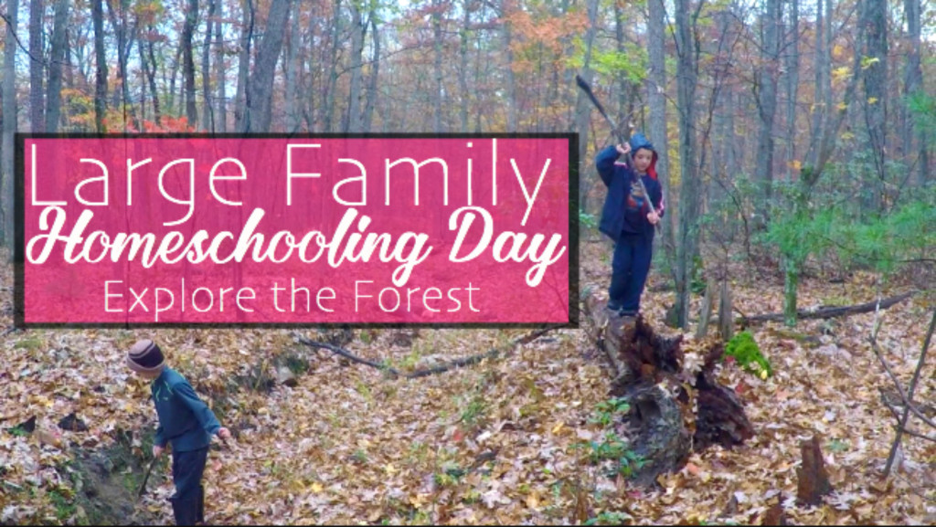 Large Family Homeschooling Day in the Life | Explore Our Forest with Us!