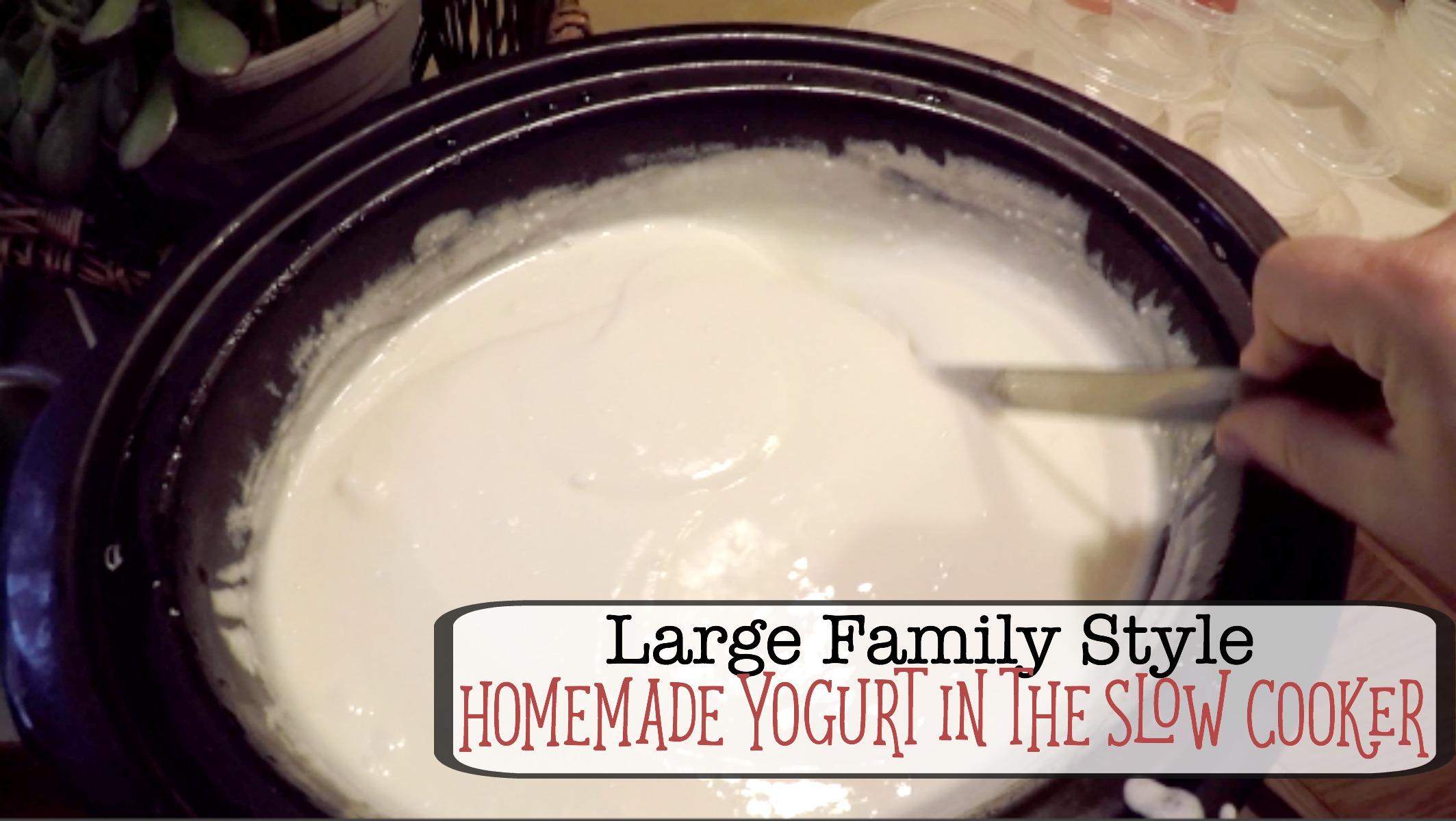 Homemade Yogurt in the Slow Cooker