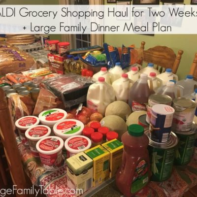ALDI Grocery Shopping Haul for Two Weeks + Large Family Dinner Meal Plan