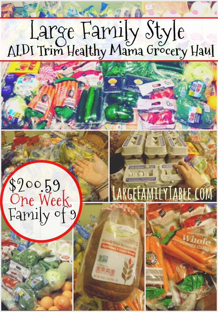 Large Family ALDI Trim Healthy Mama Grocery Haul | Plus, One
