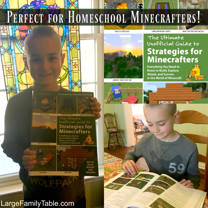 Perfect for Homeschool Minecrafters_ The Ultimate Unofficial Guide to Strategies for Minecraft