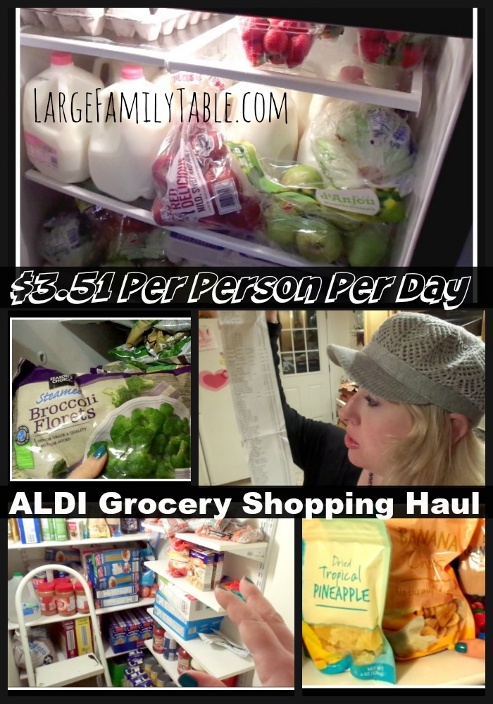 $3.51 Daily Per Person Aldi Grocery Shopping Haul | Hormonal, Exhausted, Pregnant Lady Edition!
