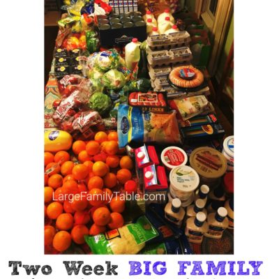 Two Week BIG FAMILY Of 9+ Grocery Shopping Haul U0026 Meal Plan (Only $3.17 Per  Person Per Day!)