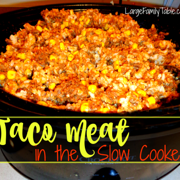 Slow Cooker Taco Meat | Large Family Recipes