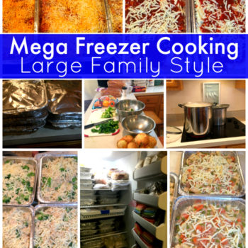 Mega Freezer Cooking | 60+ Freezer Meals | 26 Dinners, 21 Breakfasts, 16 Lunches | Large Family Style!