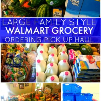 LARGE FAMILY STYLE WALMART GROCERY ORDERING PICKUP HAUL – Price Breakdown of Shopping List Included