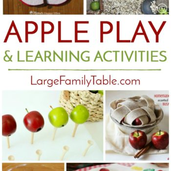 Homeschool Apple Play and Learning Activities