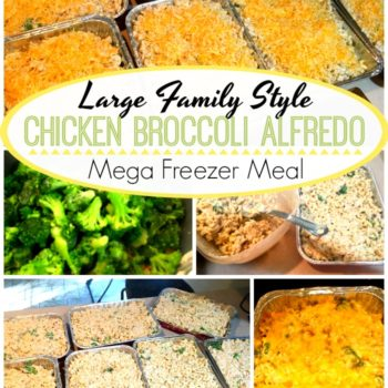Large Family Freezer Meal: Chicken Broccoli Alfredo Noodle Bake