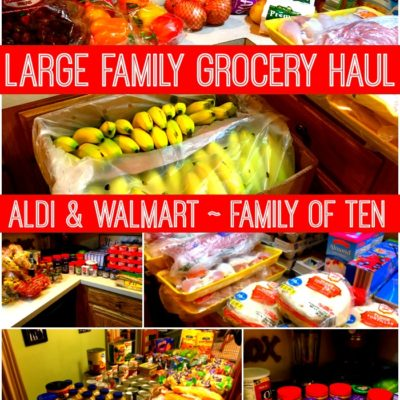 Once a Month Grocery Shopping Archives - Large Family Table
